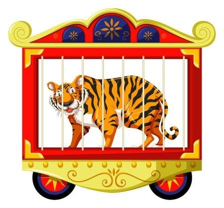Tiger in a cage cartoon.
