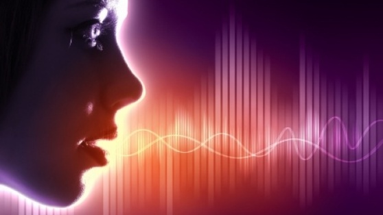 This is an illustration of sound waves that are part of vocal production.